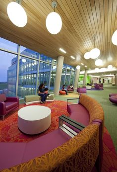 Gallery of Nemours Children's Hospital / Stanley Beaman & Sears - 3