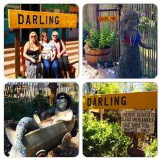 Visit Evita se Peron in Darling and enjoy a show by Tannie Evita herself Sa Tourism, Stuff To Do, Things To Do, Heart Place, St Helena, Countries Of The World, Cape Town, West Coast, Places To See
