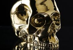 Skulls from D.L. & Co: http://skullappreciationsociety.com/skulls-from-d-l-co/ via @Skull_Society