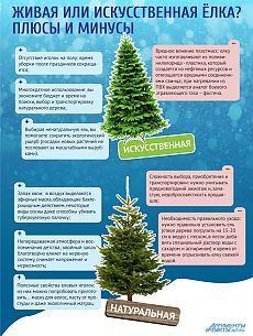 Какая елка лучше – живая или искусственная? Инфографика Праздничная ёлка — главное украшение Нового года. Какую ель выбрать и нарядить — искусственную или натуральную? В плюсах и минусах новогодних деревьев разбирался АиФ.ru.