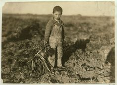 size: Photographic Print: 6 Year Old Jo Pulling Sugar Beets on a Farm Near Sterling, Colorado, 1915 by Lewis Wickes Hine : Subjects Old West Photos, Antique Photos, Vintage Photos, Walker Evans, Sterling Colorado, Volga Germans, Lewis Hine, 6 Year Old, Beach Landscape