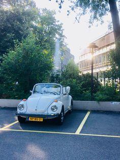 Vw Cabrio, Beetle Convertible, Volkswagen, Bmw, Cute Cars, Beetle, Vw Bugs