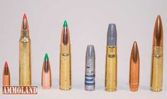 300 AAC Blackout Cartridge Diversity