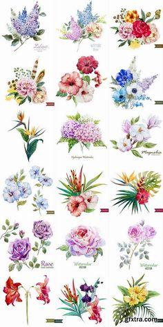 1440429732_cute-watercolor-drawing-flowers-25xeps.jpg (500×1000)