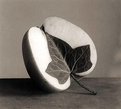 Leaf in an apple
