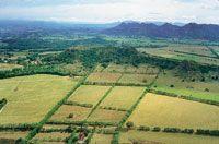 El aprovechamiento de la tierra para diversos cultivos ha modificado el aspecto de la cuenca del Magdalena, cuyo aspecto de  mosaico de formas y colores, se puede apreciar desde el aire.