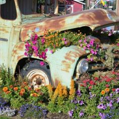 Make a junk-car garden or sell your car for cash. The choice is yours. Container Plants, Container Gardening, Flower Truck, Window Planter Boxes, Truck Art, Rustic Crafts, Garden Fountains, Farm Gardens, Ranch Style