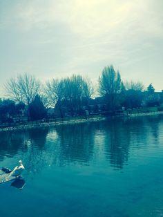 Parque de los patos, Valdemoro