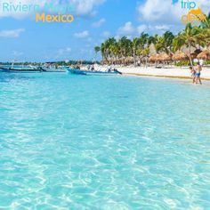 Find best hotels deals from around the world. TripGeek provide over hotels at the cheapest rate to help you save money. Book online for your next trip Best Hotel Deals, Best Hotels, Entertainment Area, Time Out, The Real World, Riviera Maya, Water Sports, The Locals, Travel Inspiration