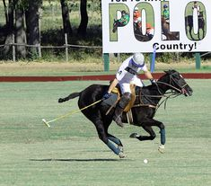 Miller Polo team on www.CourtneyPrice.com