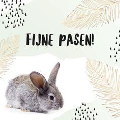 Hippe paaskaart konijn en waterverf. Ipad, Happily Ever After, Happy Easter, Rabbit, Happy Birthday, Halloween, Spring, Cards, Poster