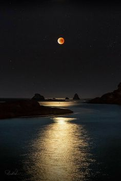 I don't believe I've seen such a beautiful Super Blue Moon Nature Landscape, Moon Photography, Photography Tips, Wedding Photography, Beautiful Moon, Lunar Eclipse, Moon Art, Nocturne, Stars And Moon