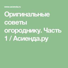 Оригинальные советы огороднику. Часть 1 / Асиенда.ру