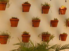 Wall design dedicated to #nature #couplestowerisle #spa