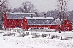 Red Barn Canvas Prints - Knox Farm Snowfall Canvas Print by Don Nieman Country Barns, Country Life, Country Living, Country Roads, Barn Pictures, Farm Barn, Country Scenes, Winter Scenes, Snow Scenes