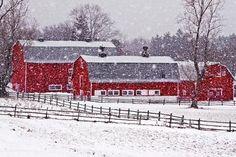 Red Barn Canvas Prints - Knox Farm Snowfall Canvas Print by Don Nieman Country Barns, Country Life, Country Living, Country Roads, Barn Pictures, Country Scenes, Farm Barn, Winter Scenes, Snow Scenes