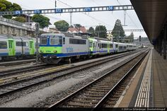 Swiss Railways, Bern, Trains, Photos, Oak Tree, Train