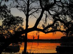 Been there. Sunset, Lake Kerr, Salt Springs, FL My husband's Grandmother lived here and had this view from her home.