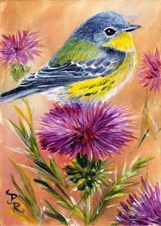 Art: Precarious Perch by Artist Paulie Rollins Bird Painting Acrylic, Watercolor Bird, Painting & Drawing, Watercolor Paintings, Bird Drawings, Bird Pictures, Pastel Art, Colorful Birds, Animal Paintings