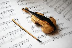 27 Creative Picture of Origami Animals Hard . Origami Animals Hard Take A Minuet To Look At This Amazing Music Themed Origami