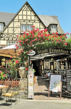 Rudesheim, Germany - Outside and open air restaurant / cafe.  Very nice setting and love the flowers!