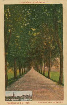 Linden Allee: http://www.ploener-ansichten.de/category/zeittafel/1927/