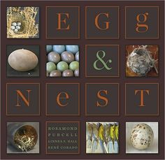 Egg & Nest by Rosamond Purcell, Linnea S. Hall, René Corado, Bernd Heinrich
