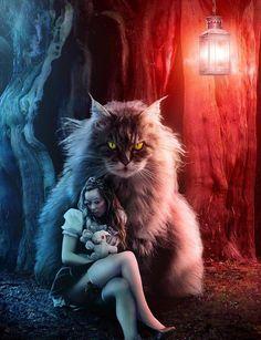 Love this juxtaposition.a bit of a dark edge to Alice in Wonderland Dark Alice In Wonderland, Adventures In Wonderland, Fantasy Women, Fantasy Art, Fantasy Images, Tim Burton Style, Chesire Cat, Shot In The Dark, Alice Madness