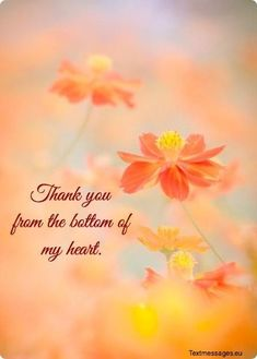 Thank You Quotes Discover Top 50 Thank You Messages And Texts For Friends Thank You Msg, Thank You Quotes For Helping, Thank You Quotes For Friends, Thank You Messages Gratitude, Thank You Messages For Birthday, Gratitude Quotes Thankful, Thank You Wishes, Birthday Wishes For Friend, Thank You For Loving Me