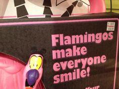 :) #floydtheflamingo #smile