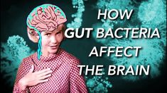How the Microbiome affects the Brain [Transcript] | What I've Learned on Patreon