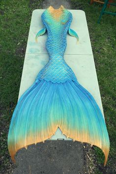 Finfolk Productions Finfolk Mermaid Tails, Fin Fun Mermaid Tails, Silicone Mermaid Tails, Mermaid Fin, Mermaid Tale, Real Mermaids, Mermaids And Mermen, Mermaid Tail Drawing, Professional Mermaid