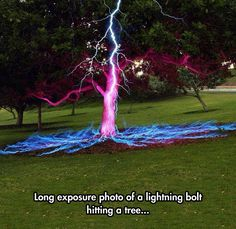 Lightning Hitting a Tree.  Wha??