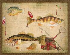 Painting - Fish Trio-a-basket Weave Border by Jean Plout