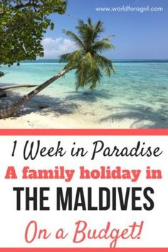 How to plan the ultimate budget family holiday in the Maldives Lanai Island, Big Island Hawaii, Island Beach, Cheap Family Vacations, Cheap Beach Vacations, Romantic Vacations, Maldives Beach Resort, Beach Resorts, Tonga