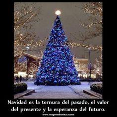 Frases De Navidad: Asi Es La Navidad