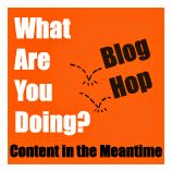 What Are You Doing? January 2016 Blog Hop