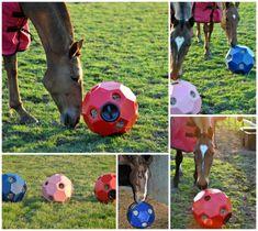 Horse Shelter, Horse Stables, Horse Barns, Animal Shelter, Toys For Horses, Baby Horses, Show Horses, Goat Hay Feeder, Horse Feeder