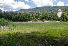 Für Aufregung bei Anrainern sorgte vergangene Woche ein verlandeter Weiher in St. Jakob am Thurn (Tennengau). Viele klagten über Gestank und tote Fische. Sanierungsarbeiten sollen dem Teich nun wieder auf die Sprünge helfen.