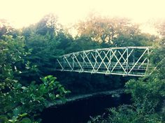 #bridge Bridge, Legs, Attic, Bro