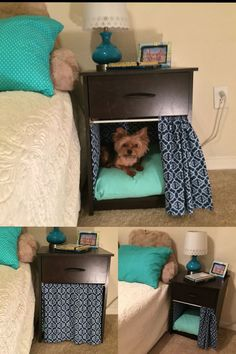 Why is using a dog house a good idea? Most people tend to have the misconception that dog houses are meant for only those dog owners who intend to keep their dogs outside. However, the truth is that a…Read more → Animal Room, My New Room, My Room, Puppy Room, Diy Dog Bed, Diy Bed, Dog Furniture, Cheap Furniture, Dog Rooms