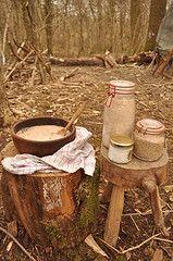 stump & tree round stool