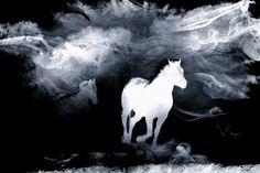 Wild Horse #newmedia #art #digitalart #NMA http://newmediaart.co/image/lZ3S?utm_content=buffer3f805&utm_medium=social&utm_source=pinterest.com&utm_campaign=buffer via New Media Art Co