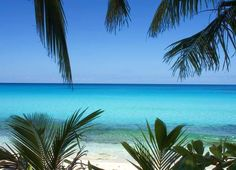 Bahamas? Love that beach