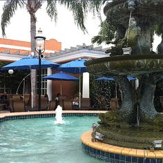 Gorgeous al fresco dining by the fountain! Come on out to the Fountain Grille at the Safety Harbor Resort and Spa!    http://www.safetyharborspa.com/dining/fountain_grille_restaurant