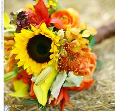 Seasonally inspired blooms were all over Loren and Matt's wedding, including the bride's bouquet. Loren carried a design that included sunflowers, calla lilies, roses, lilies, and protea.