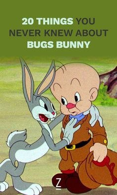 For the wabbit fan in you!