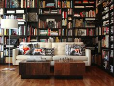 knihovna a sofa