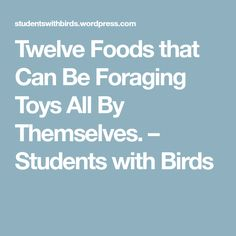 Twelve Foods that Can Be Foraging Toys All By Themselves. – Students with Birds