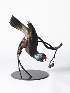ART - Nick Bibby - mascarene parrot